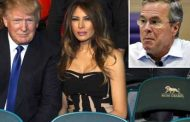 Jeb Bush Begs Melania Trump to Steal Trump's Phone to Stop His Tweets!